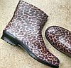 Резиновые полусапожки женские сапоги оптом Litma Леопард