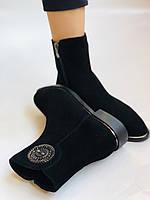 Женские ботинки. На маленьком каблуке. Натуральный замш.  Polann.  Р. 35.36.37.38.39  Vellena, фото 8