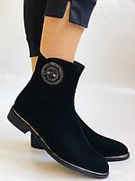 Женские ботинки. На маленьком каблуке. Натуральный замш.  Polann.  Р. 35.36.37.38.39  Vellena, фото 2