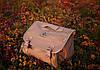 Портативный компрессор Berkut R17 (55 л/мин), фото 4