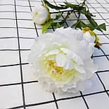 Ветка пиона  3-ка белый  83 см., фото 3