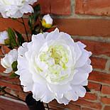 Ветка пиона  3-ка белый  83 см., фото 4
