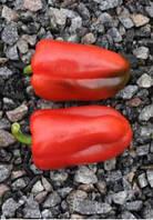 Семена перца РЕДКАН F1, (250 сем.), Clause, Франция