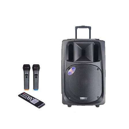 Акустична портативна колонка комбік Temeisheng SL-16   Два мікрофони, Bluetooth, USB, фото 2