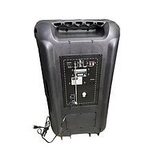 Комплект колонок Rainberg RB-888 250Вт | Активная акустическая система, фото 2