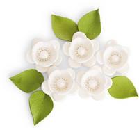 """Набір """"Яблуневий цвіт"""", білий"""