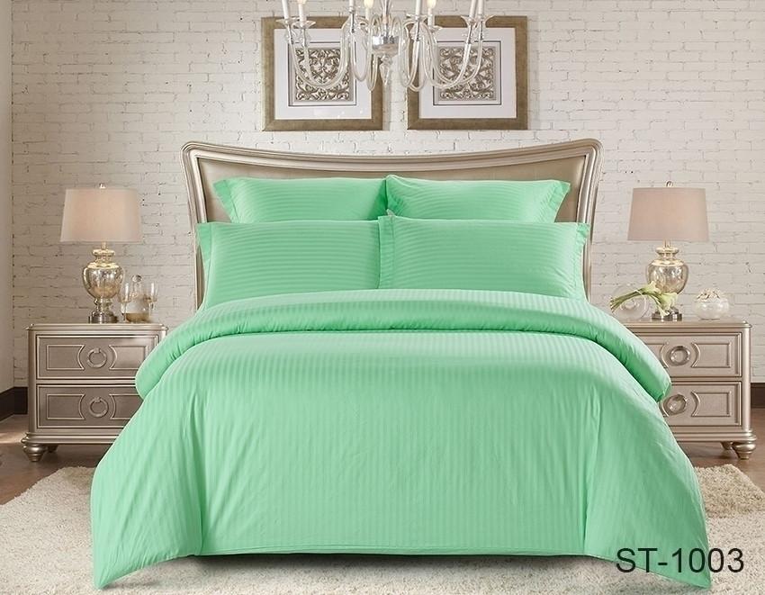 Двуспальный комплект постельного белья мятного цвета в полоску, Сатин-страйп