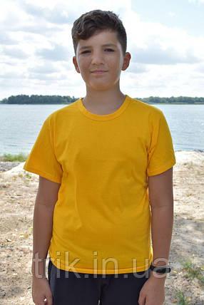 Желтая футболка подростковая узкая бейка, фото 2