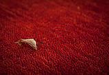 Червоний однотонна килим ручної роботи з натуральної 100% вовни, фото 6