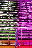 Линейный Светодиодный фитосветильник Full Spectrum PS 45W 60см, фото 5