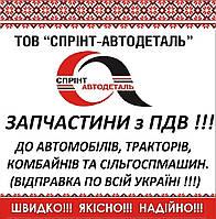 Хомут глушителя ГАЗ-53, 3307, 66, ПАЗ, ЗМЗ, d=54   в сб. (М8) (пр-во Украина), 20-1203078-Р, фото 1