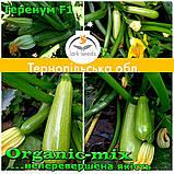 Семена кабачка Теренум F1 / Terenum F1, тип Искандер, ТМ Spark Seeds (США), проф. пакет 500 семян, фото 4
