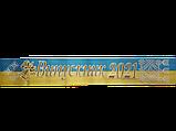 """Лента """"Випускник 2021"""" сине желтая, фото 2"""