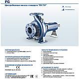 Насос центробежный промышленный Pedrollo FG 32/250C, фото 3