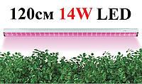 Фитосветильник линейный светодиодный Feron AL7000 14W 1200 мм (Фитолампа полного спектра)