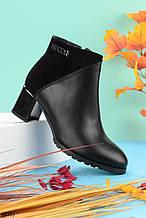 Женские осенние ДЕМИ ботинки черные на каблуке 6,5 см эко-кожа + замш