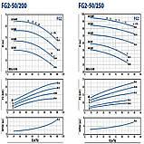 Промышленный центробежный насос Pedrollo FG 50/250B, фото 6
