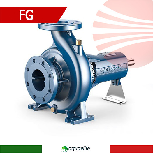 Центробежный промышленный насос Pedrollo FG 65/125C
