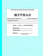 Журнал обліку роботи групи ДЮСШ
