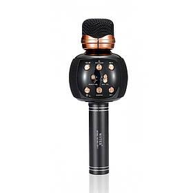 Беспроводной Микрофон DM Караоке WS-2911