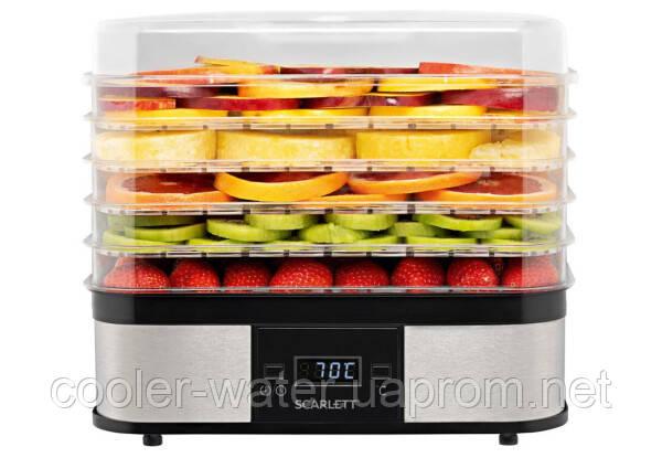 Сушарка для фруктів і овочів Scarlett SC-FD421T19