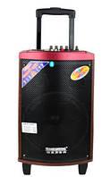 Акустика на аккумуляторе с радио-микрофоном A71