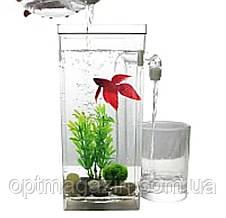 Акваріум міні з системою самоочищення My Fun Fish/ акваріум з підсвічуванням 2 л