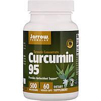 Куркумин, Curcumin 95, 500 мг, Jarrow Formulas, 60 Капсул