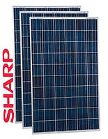 Солнечная батарея SHARP ND–R245/A5  (245 Вт\24В)