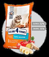Клуб 4 лапы Премиум корм для кошек с лососем 14 кг