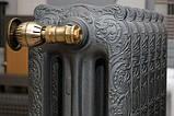 Чугунный декоративный радиатор Carron The Rococco 780 (Англия), фото 8