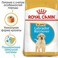 Royal Canin Labrador Retriever Junior 3кг - для цуценят породи лабрадор ретрівер