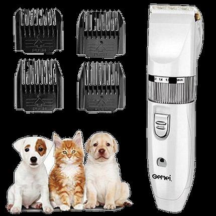 Машинка для стрижки животных Gemei GM-634 USB - Профессиональная машинка для стрижки собак и кошек, фото 2