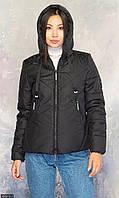 Куртка чёрный Осень Украина большого размера 48 856812-1