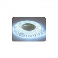 LED  лента 220V COLORADO 5W/1m 6400K 7Lm/1led IP65 2835 156led/m HOROZ ELECTRIC