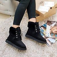 Угги женские на шнурках зимние Ugg ботинки из натуральной замши и овчины черные, фото 1