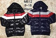 Куртка утеплена для хлопчиків F&D , 8-16 років. Артикул: M512, фото 1