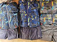 Куртка+комбинезон утепленные для мальчиков Taurus, 1-5 лет. Артикул: DL631