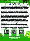 """Полный комплект: муравьиная ферма """"Мечта новичка"""" + муравьи messor structor (жнец) , корм и аксессуары., фото 9"""