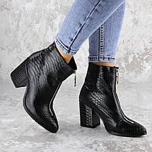 Черевики жіночі Fashion Timo 2144 36 розмір, 23,5 см Чорний, фото 2