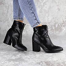 Черевики жіночі Fashion Timo 2144 36 розмір, 23,5 см Чорний, фото 3