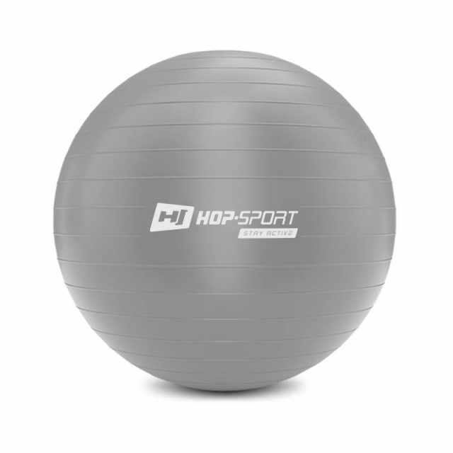 Фітбол, м'яч для фітнесу Hop-Sport 75cm HS-R075YB silver + насос