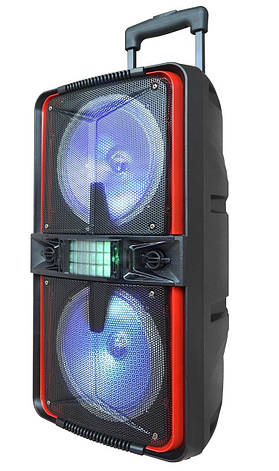 Акустическая портативная колонка комбик Ailiang LiGE-770 100Вт | AUX, Bluetooth, USB, фото 2