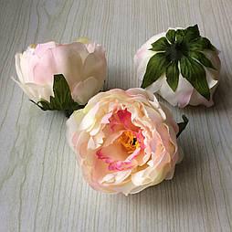 Головка пиона, 12 см. персиковый  с розовой серединой