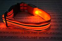 """Ошейник светящийся для собак """"Полоса"""" - самый яркий & стильный Оранжевый"""