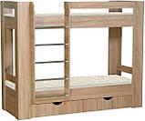 Детская двухъярусная кровать чердак Дм72, фото 2