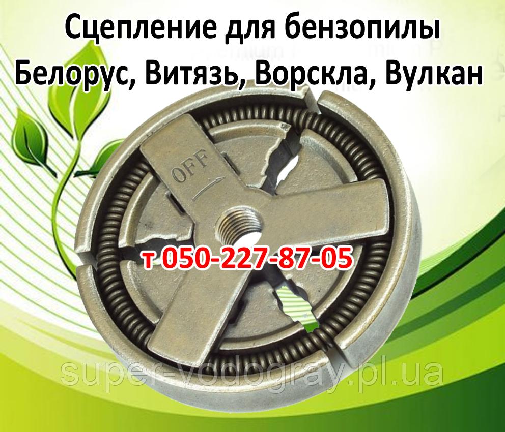 Сцепление для бензопилы Белорус, Витязь, Ворскла, Вулкан