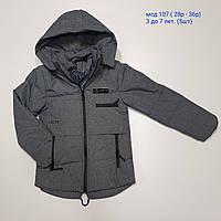 Детская куртка на мальчика весна-осень 107 (28-36) оптом