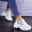 Женские бежевые кроссовки Braxton 1742 (39 размер), фото 3