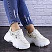 Женские бежевые кроссовки Braxton 1742 (39 размер), фото 5